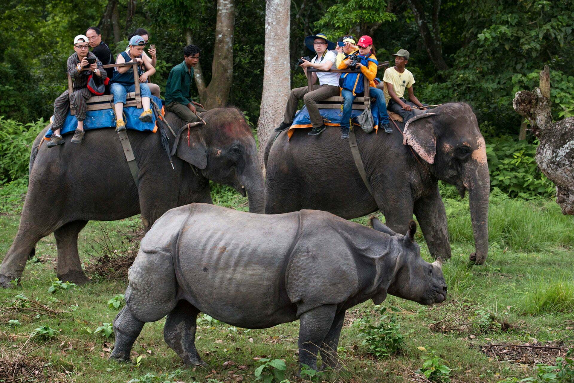 hot spring trek and wildlife safari trek 1