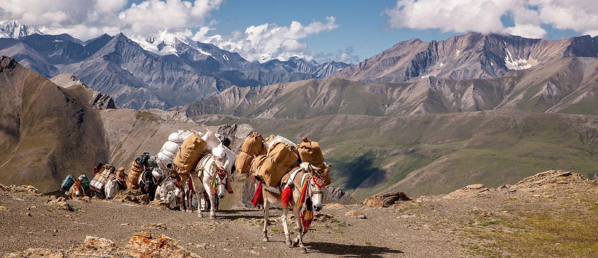 Everest Base Camp Trekking  Annapurna Trekking   Langtang  Trekking - Alpine Club of Himalaya